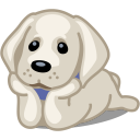 resim/avatar/dog-labrador-icon.png